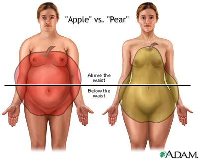 different-types-of-weight-gain-picture.jpg